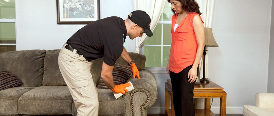 Mount Pleasant, MI carpet upholstery cleaning