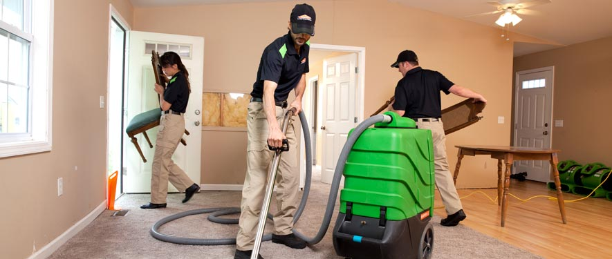 Mount Pleasant, MI cleaning services
